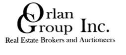 Orlan-Group-logo